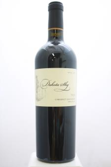 Dakota Shy Cabernet Sauvignon Ten 2015